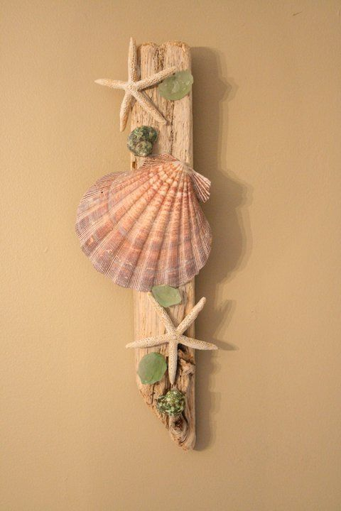 Shell And Starfish Wall Decor Could Make From Things We Find On