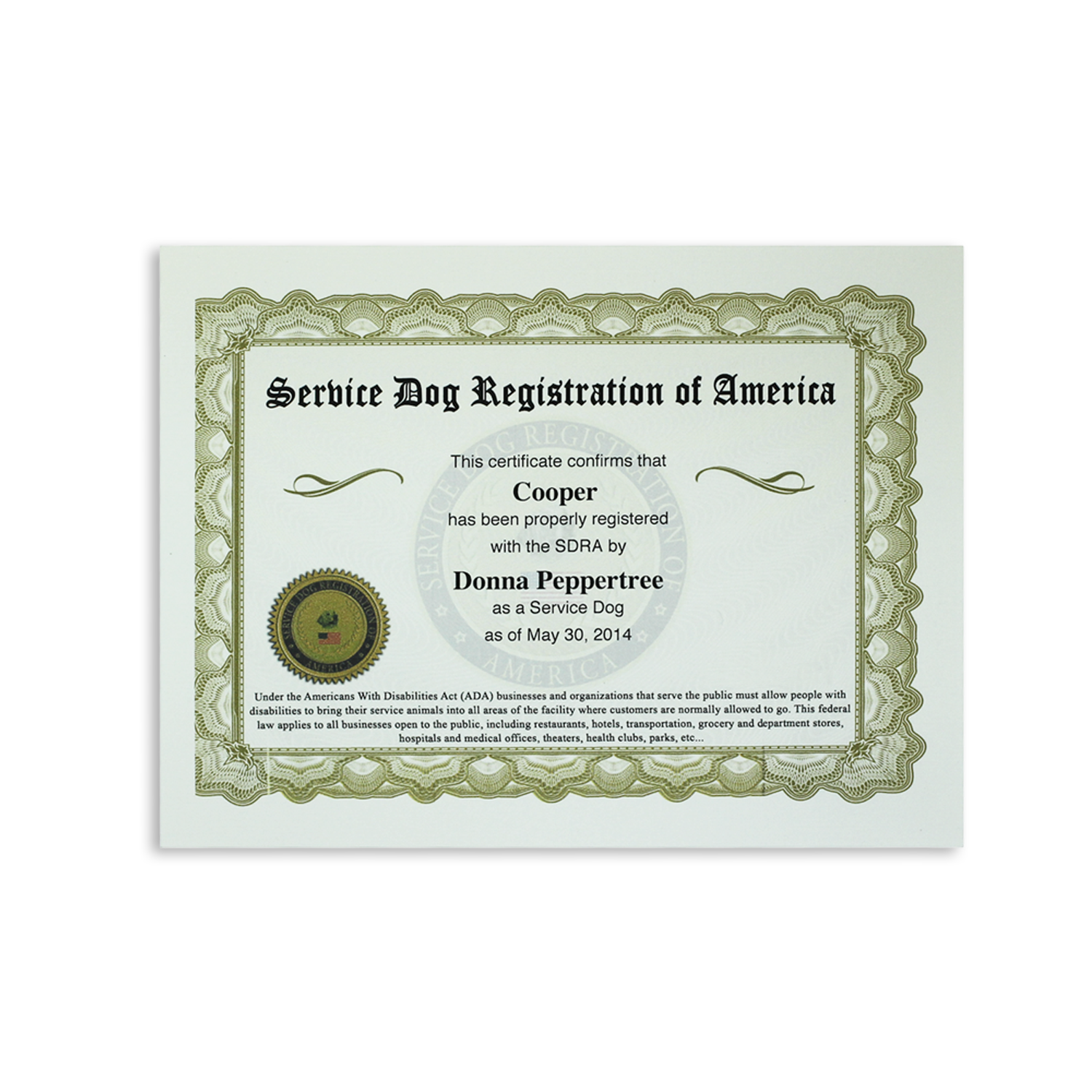 Buy Ultimate Service Dog All Access Vip Kit Online Sdra Service Dogs Service Dog Training Service Dog Vests