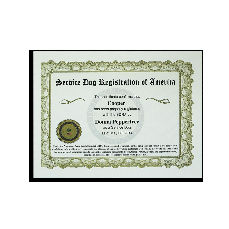 Buy Ultimate Service Dog All Access Vip Kit Online Sdra Service Dogs Service Dog Training Service Dog Vests