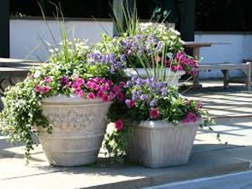 How To Arrange Outdoor Flower Pots 5