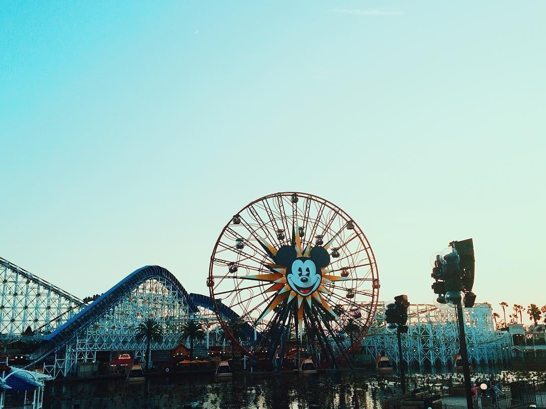 california adventures  craving some california screamin atm by haleysnewgroove