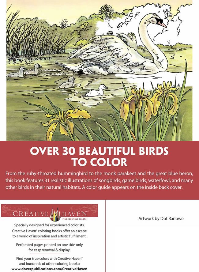 Creative Haven Beautiful Birds Coloring Book ABOUT THIS BOOK Welcome To Dover Publications