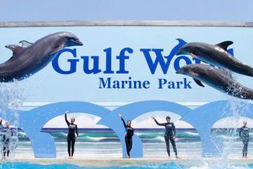Gulf World Marine Park General Admission