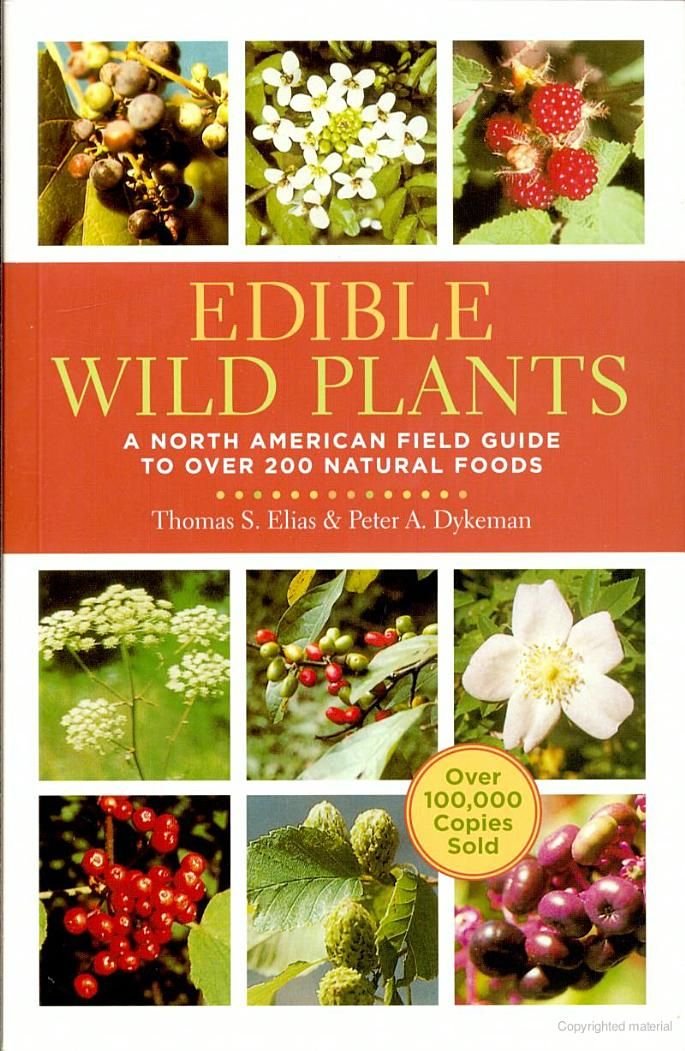 Pin By Theatre Of Youth Toy On Book Favorites Edible Wild