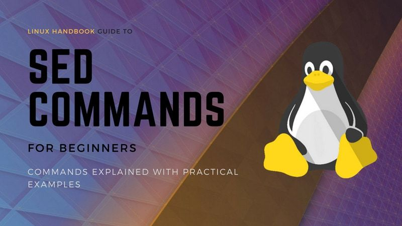 Getting Started With Sed Command Beginner S Guide Avec Images