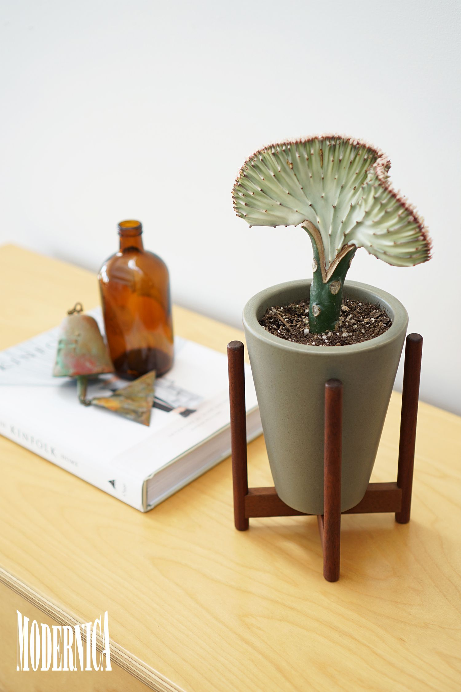 Black Mini Wire Hairpin Plant Stand And Terracotta Pot