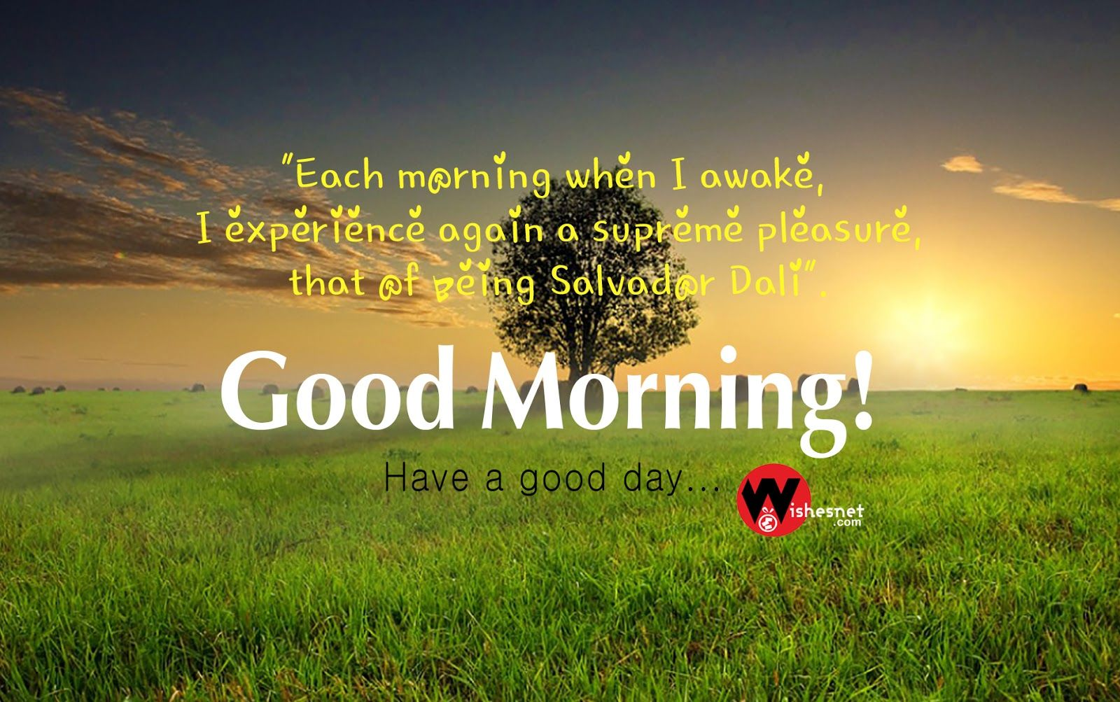 Good Morning Nature Images Hd With Nature Quotes Good Morning Nature Good Morning Nature Quotes Good Morning Greetings Images