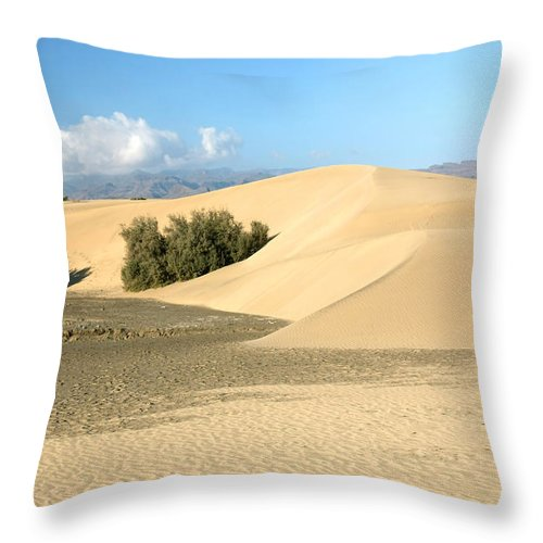 The Desert Throw Pillow For Sale By Halina Jasinska In 2020 Throw Pillows Pillow Sale Pillows