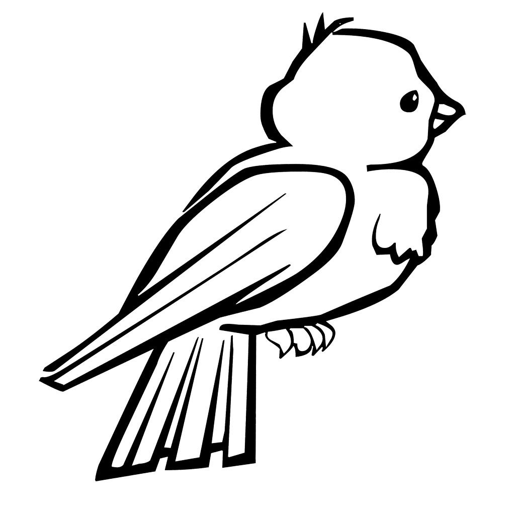 Small Birds Are Cute And Attractive Coloring Page Kids Coloring