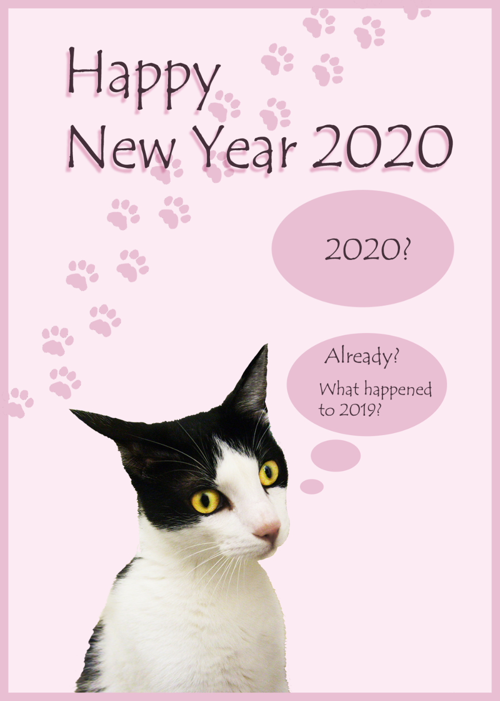Pin by Linda Walker on NEW YEARS Funny new year, Happy