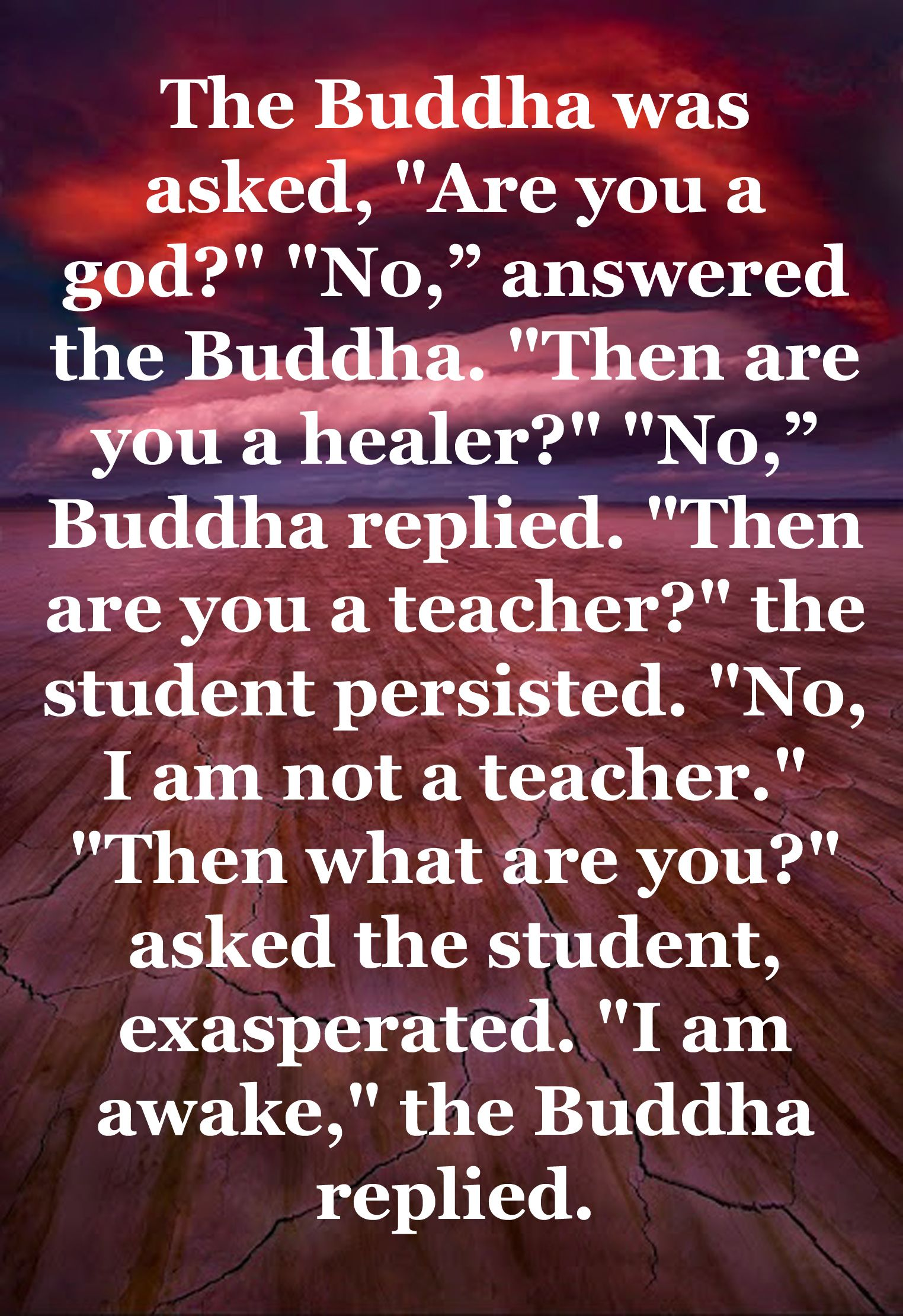 I Am Awake The Buddha Replied With Images Wisdom Thoughts