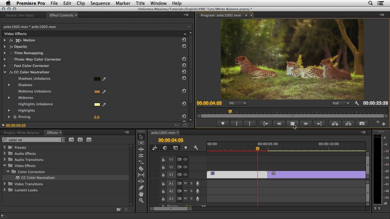 Use Cyroce Color Neutralizer effect (included with After Effects) to