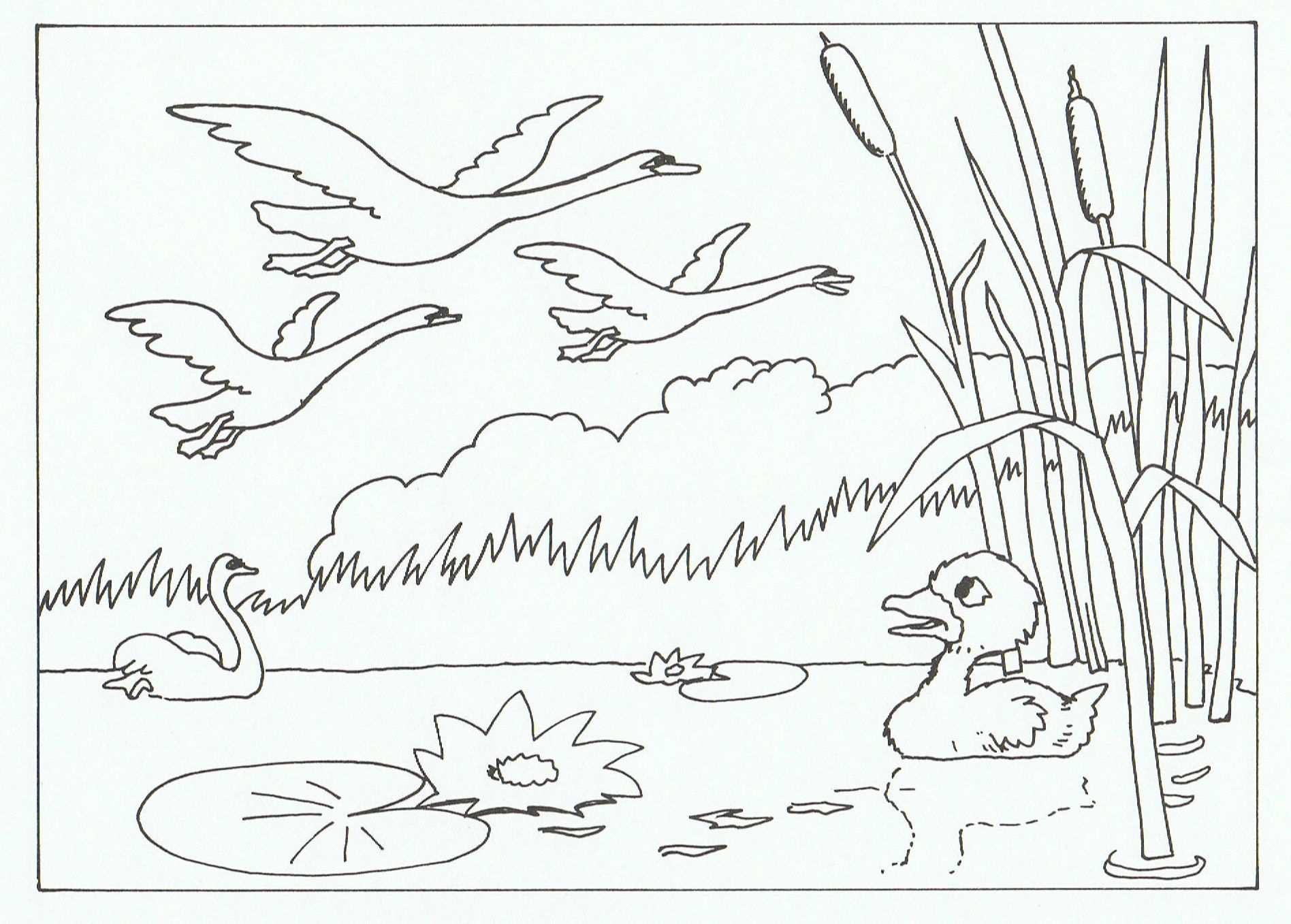 Free coloring pages for the ugly duckling - The Ugly Duckling