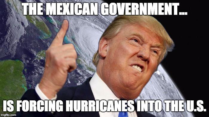 ce5b4bf536bd99279977f075bf6abbd4 donald trump memes google search trump pinterest hurricane