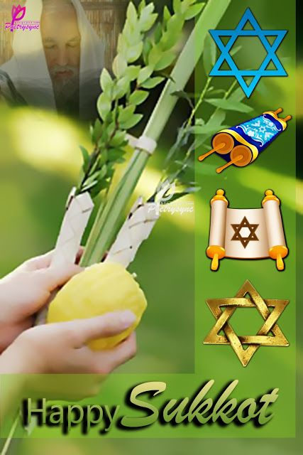 Poetry sukkot festival greetings cards with wishing quotes poetry sukkot festival greetings cards with wishing quotes m4hsunfo
