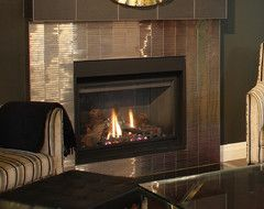 fireplace surround houzz living room pinterest fireplace rh pinterest com houzz fireplace mantel ideas houzz contemporary fireplace surrounds