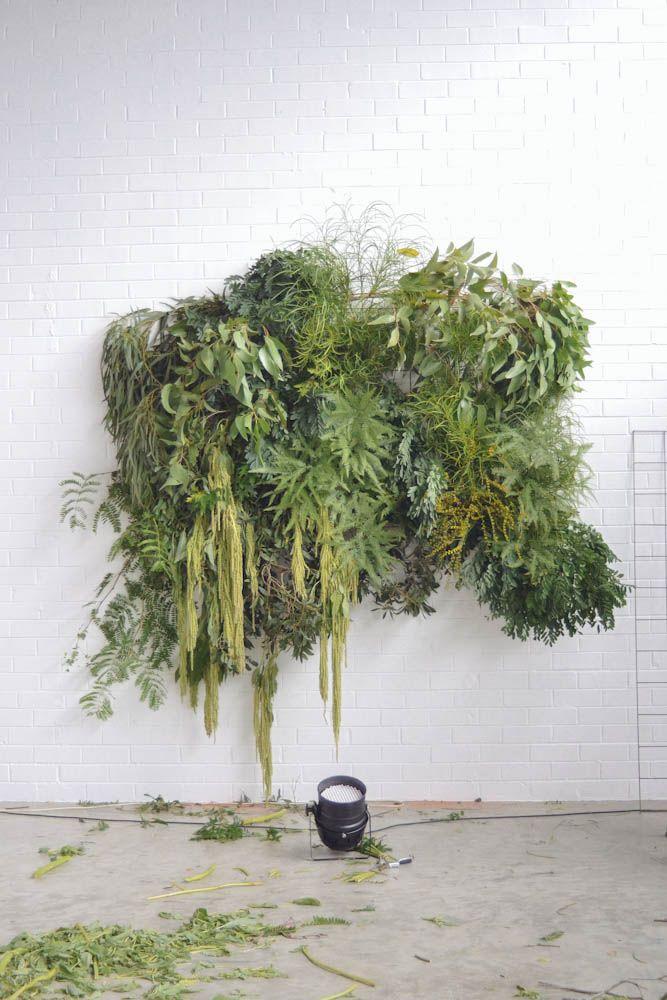 Szebastiaan + Elise  plante  Pinterest  식물, 텐트 및 벽 장식
