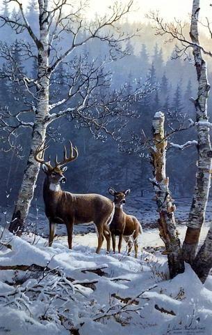 Persis Clayton Weirs River von Gold-Whitetail Deer