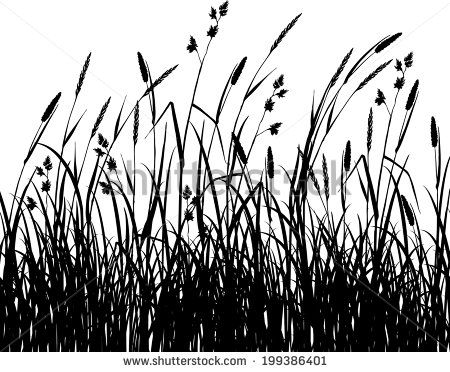 vector flora grass silhouette free vector for free download about 13 free vector in ai eps cdr s grass silhouette silhouette painting flower line drawings vector flora grass silhouette free