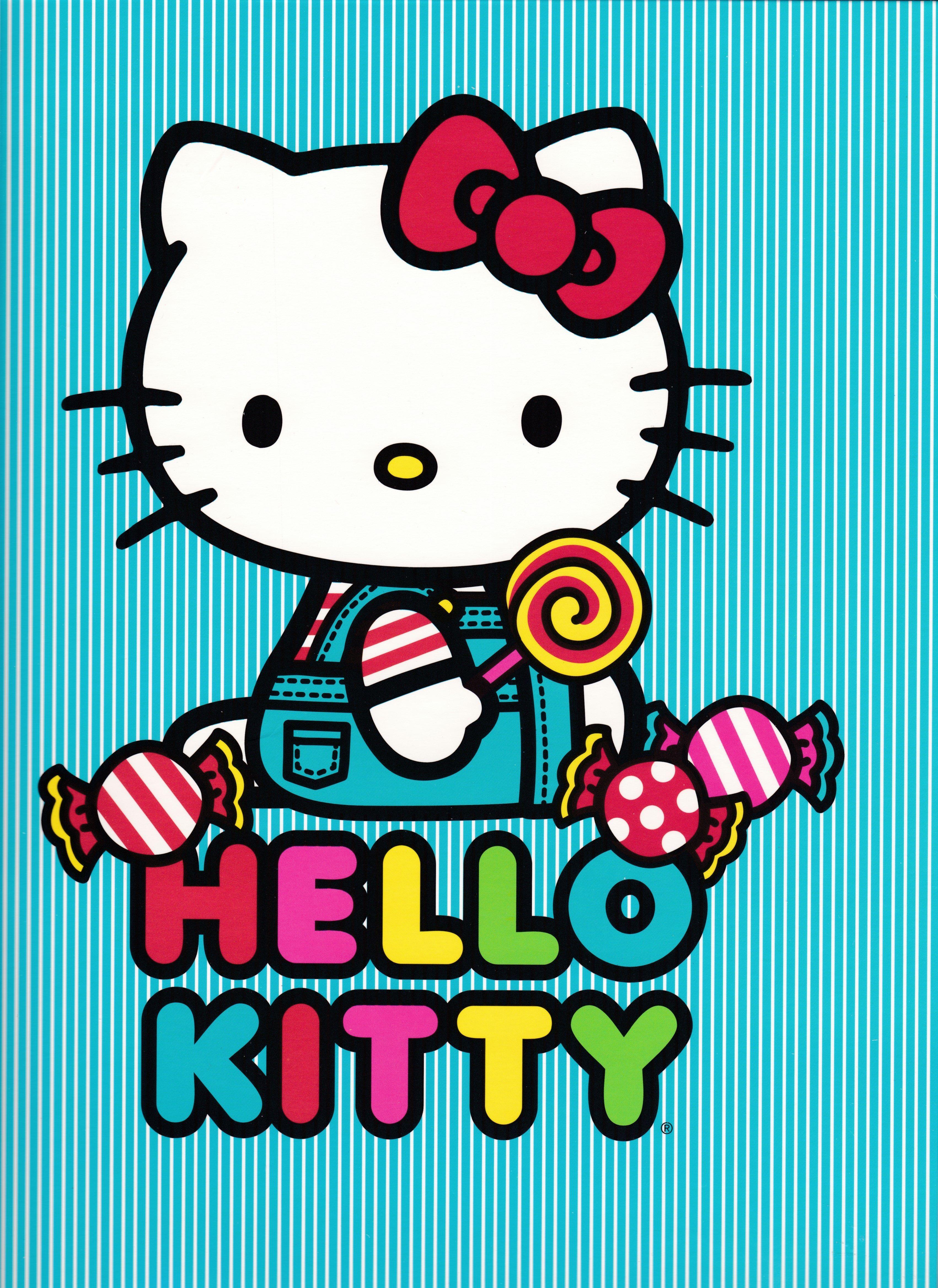 Hello Kitty Portafolio Folder\