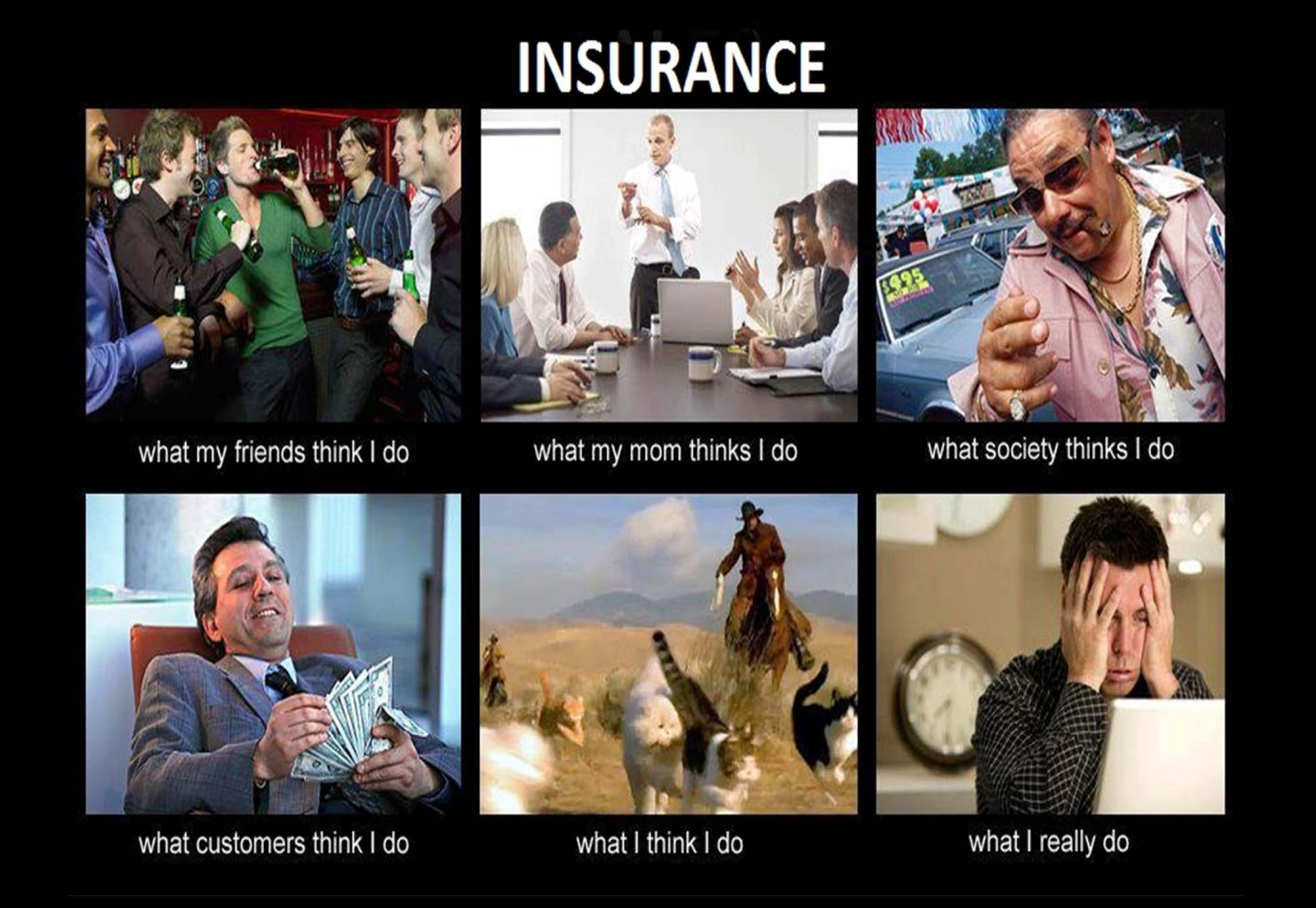 So True And So Funny Real Estate Humor Real Estate Memes