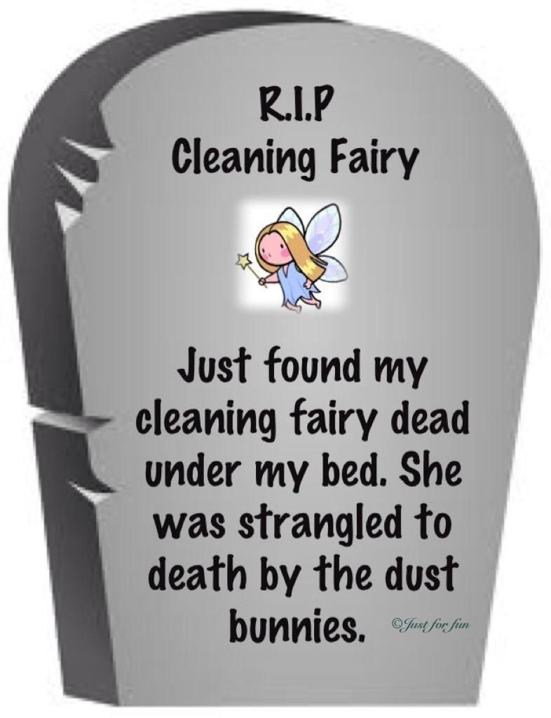 Cleaning Fairy Funny Quotes House Cleaning Humor Clean Humor