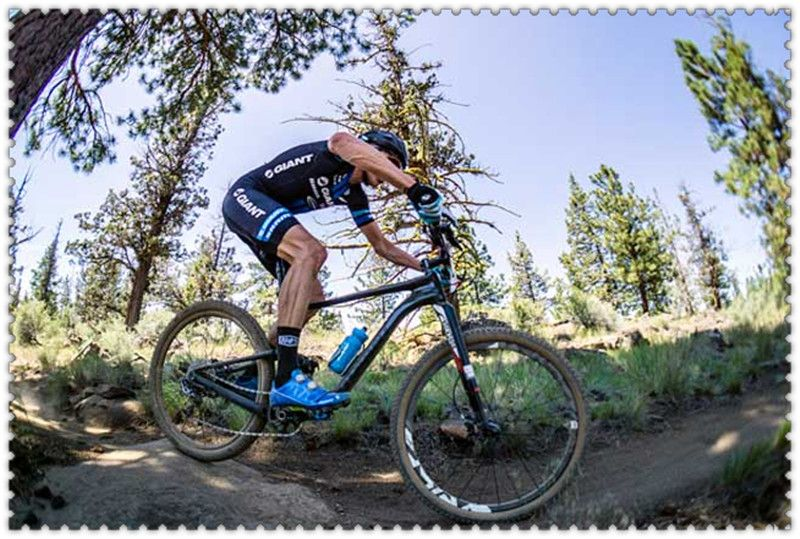Cool Cycling Cycling Jerseys Bike Jerseys Biking Cool Cycling