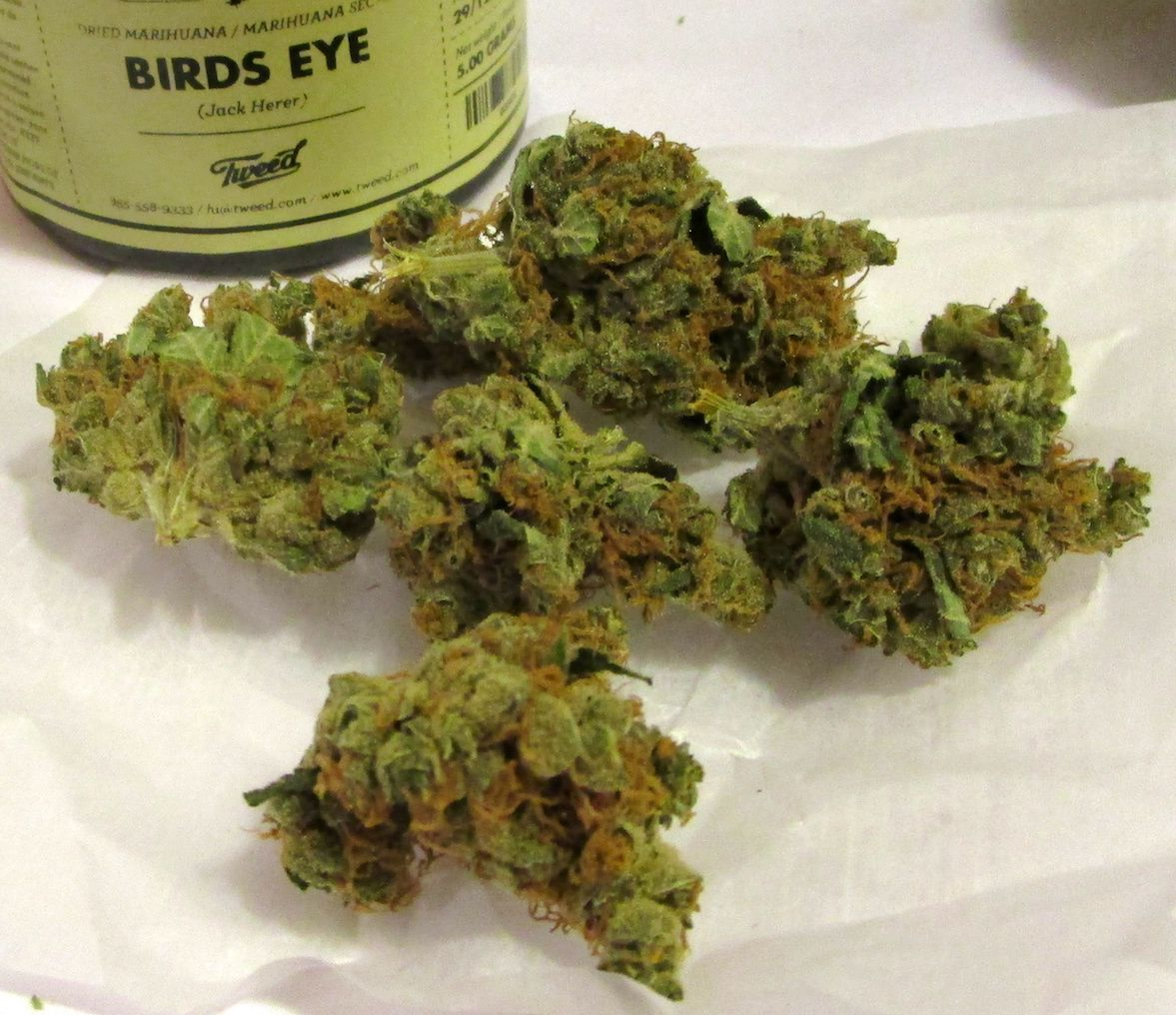 This potent sativa is a phenotype of Jack Herer grown by Tweed, Inc., and it delivers a potent cerebral high that is not unlike its sibling. Patients use this strain report that it soothes the mind with its euphoric and creative head effect and its subtly stimulating body effect. This strain is great for all day medication as it provides a strong motivating euphoria that makes all work seem less daunting. This strain's buds are small and popcorn-shaped pale green buds that are coated in a…