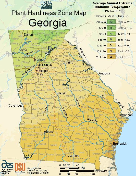 Georgia Planting Zones Usda Map Of Georgia Growing Zones With