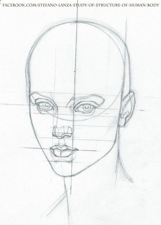 www.facebook.com/... #anatomy #head #drawing #draw #pencil | Arte ...