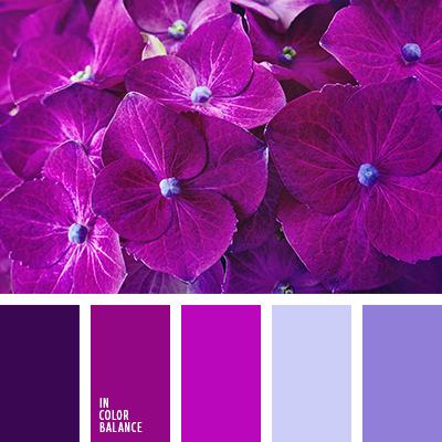 Цветовая палитра №3377