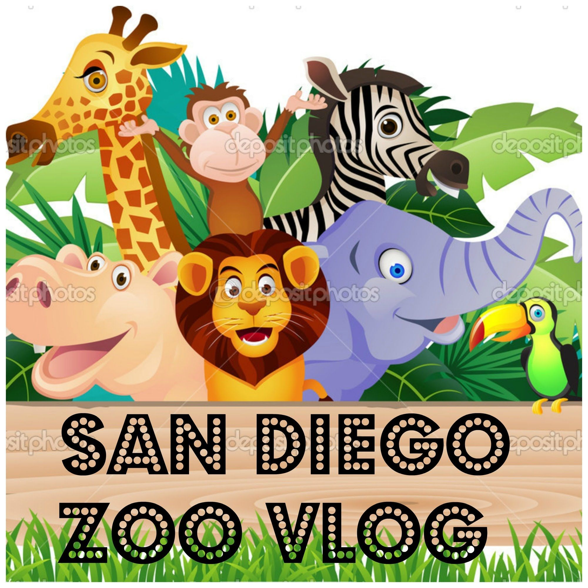 San Diego Zoo Vlog With Images Cartoon Animals Animals