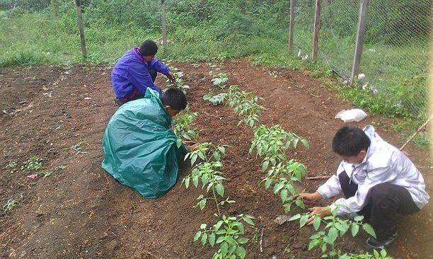 Blancaneaux Teaches Organic Farming