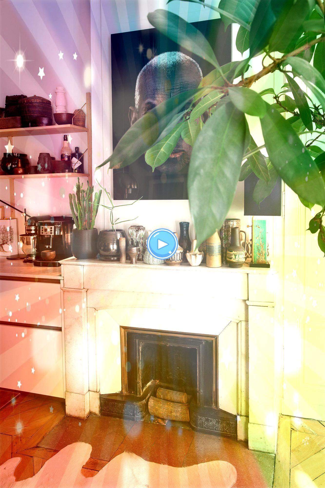 Socialite Family  Plantes et accumulation  comme un goût de voyage chez les créateurs de Maison HandThe Socialite Family  Plantes et accumulation  comme un g...