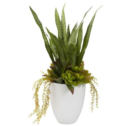 """Nearly Natural 30"""" Mixed Succulent With White Planter by Nearly Natural, http://www.amazon.ca/dp/B00H5A2XWG/ref=cm_sw_r_pi_dp_a1y5sb0NCDQ8Z"""