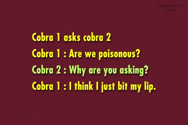 Funny Quote: Cobra 1 asks cobra 2 Cobra 1...