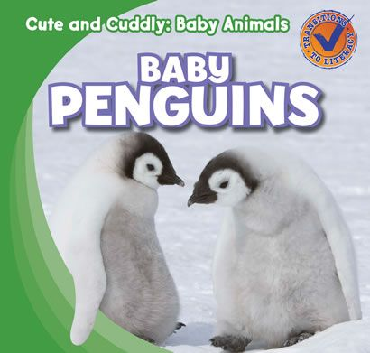 Can baby penguins fly? Find the answer in this fun title!