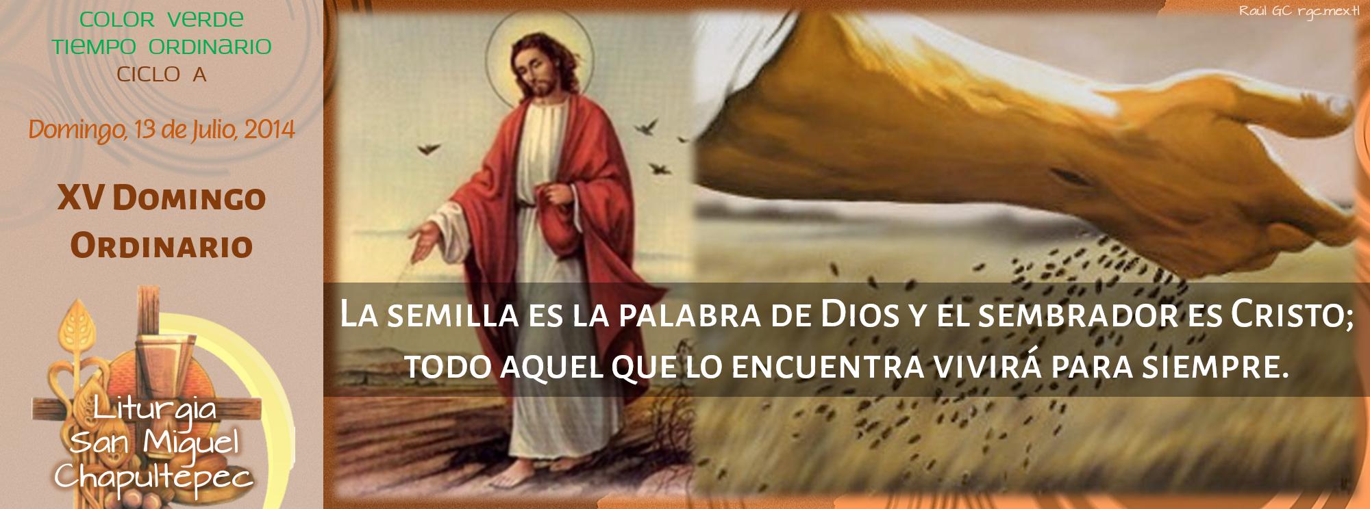 Ciclo A, XV Domingo Ordinario Facebook