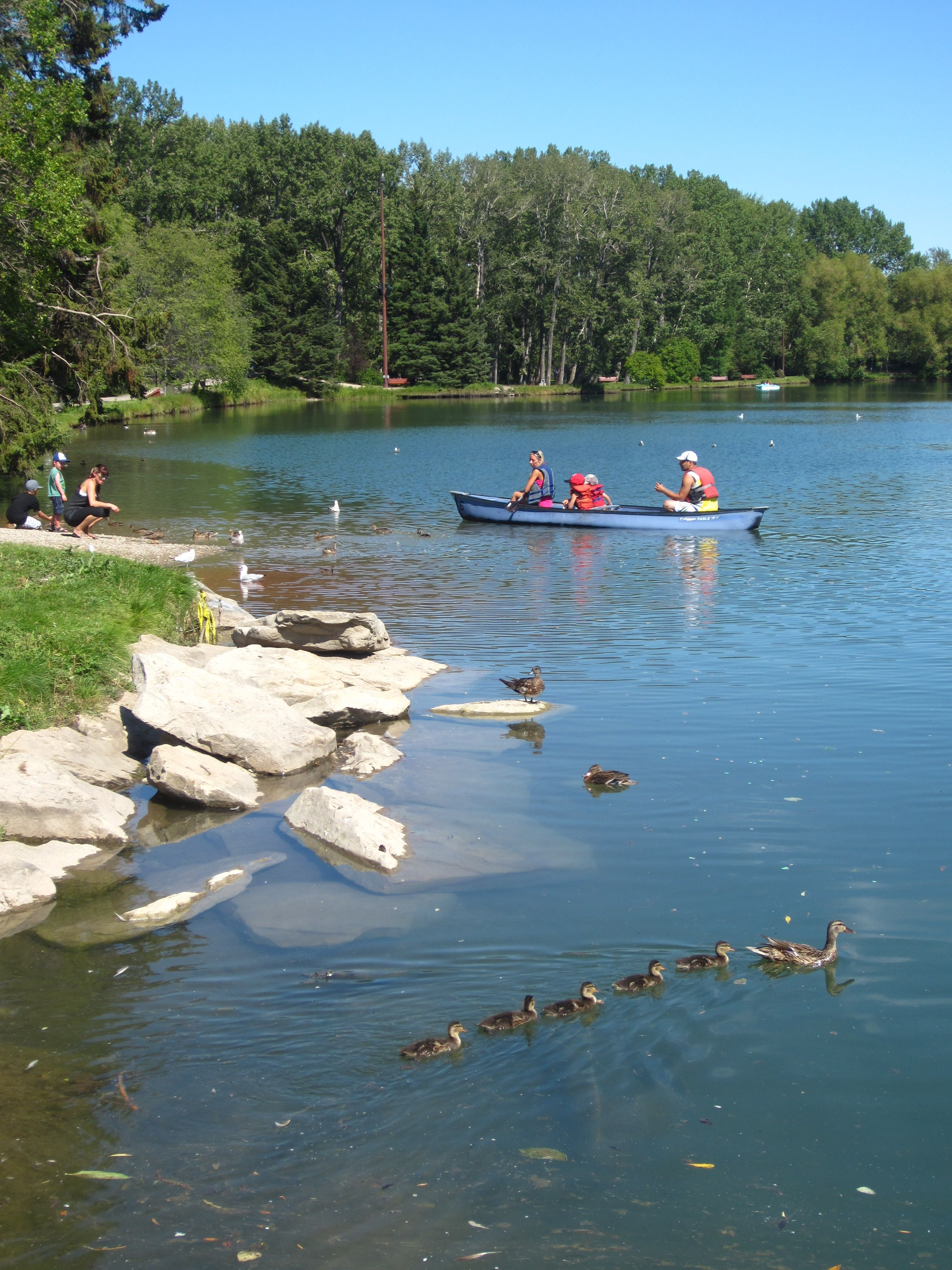 The lagoon at Bowness Park in Calgary, Alberta.