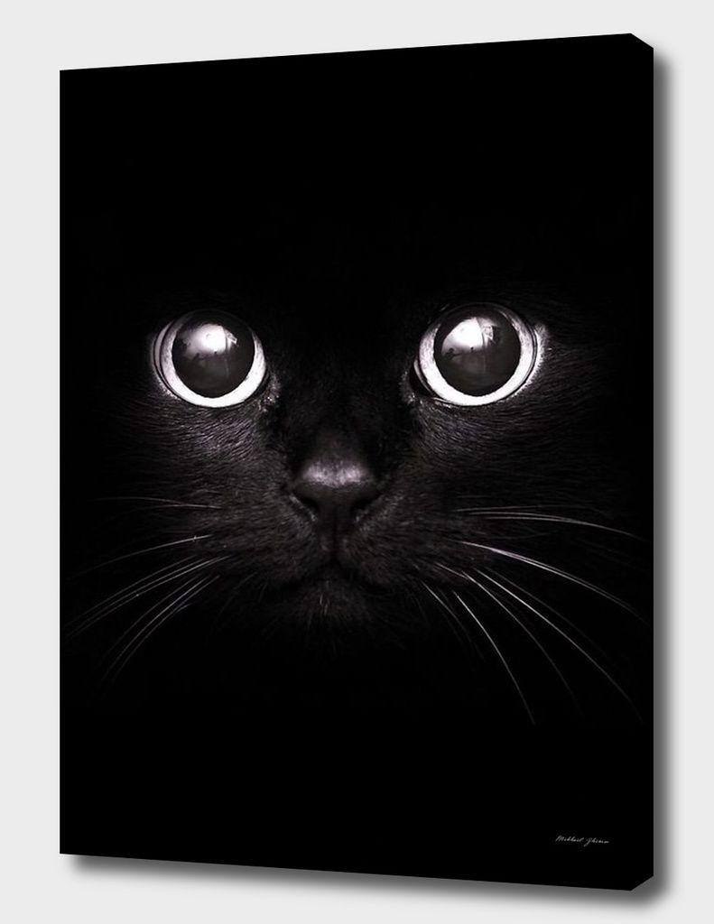 The black cat canvas print by mikhail zhirnov cat pinterest