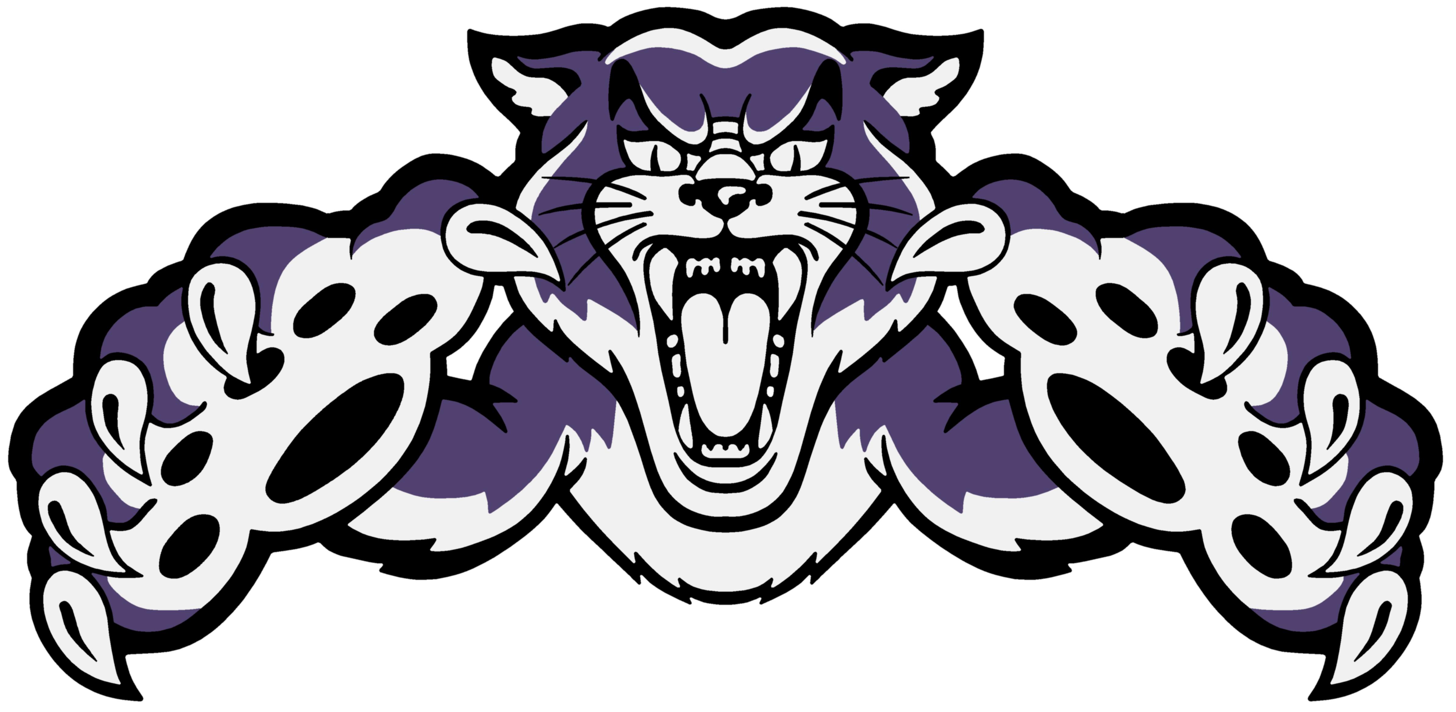 Wildcat Mascot Logo 355199 Png 4777 2337 Wildcats Logo Wild Cats Unicorn Wallpaper Cute