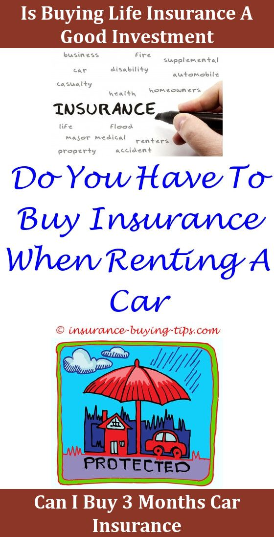 Small Business Insurance Quote Free Auto Insurance Quotes  Insurance Quotes And Small Business