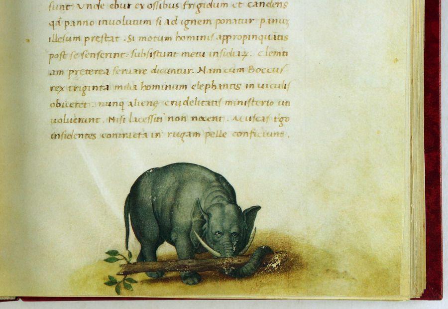 Petrus Candidus. Cynthia M. Pyle (Kommentar).  Das Tierbuch des Petrus Candidus. Codex Urbinus Latinus 276. Geschrieben 1460, illuminiert im 16. Jahrhundert. Faksimile und Kommentar in 2 Bänden.