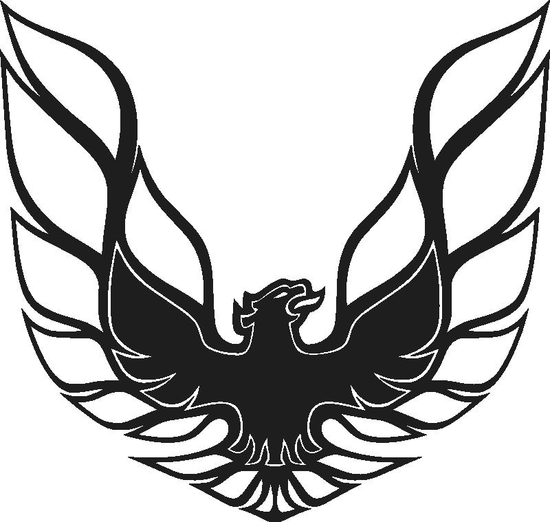 The Trans Am Fire Bird Is Pretty Sick Firebird Car Pontiac Firebird Firebird