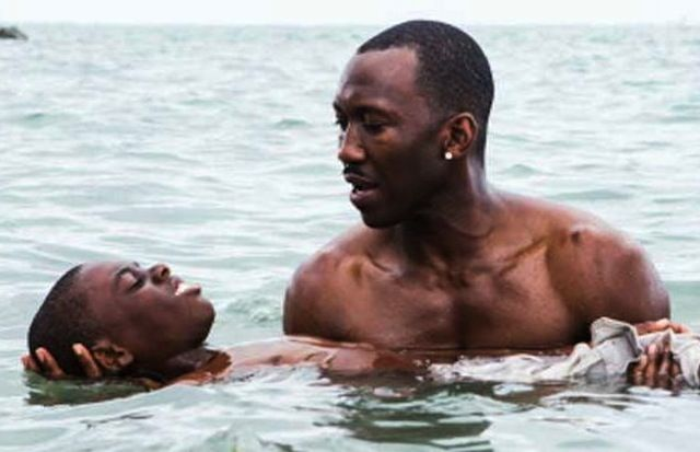 putlockers ch watch moonlight 2016 online free putlocker