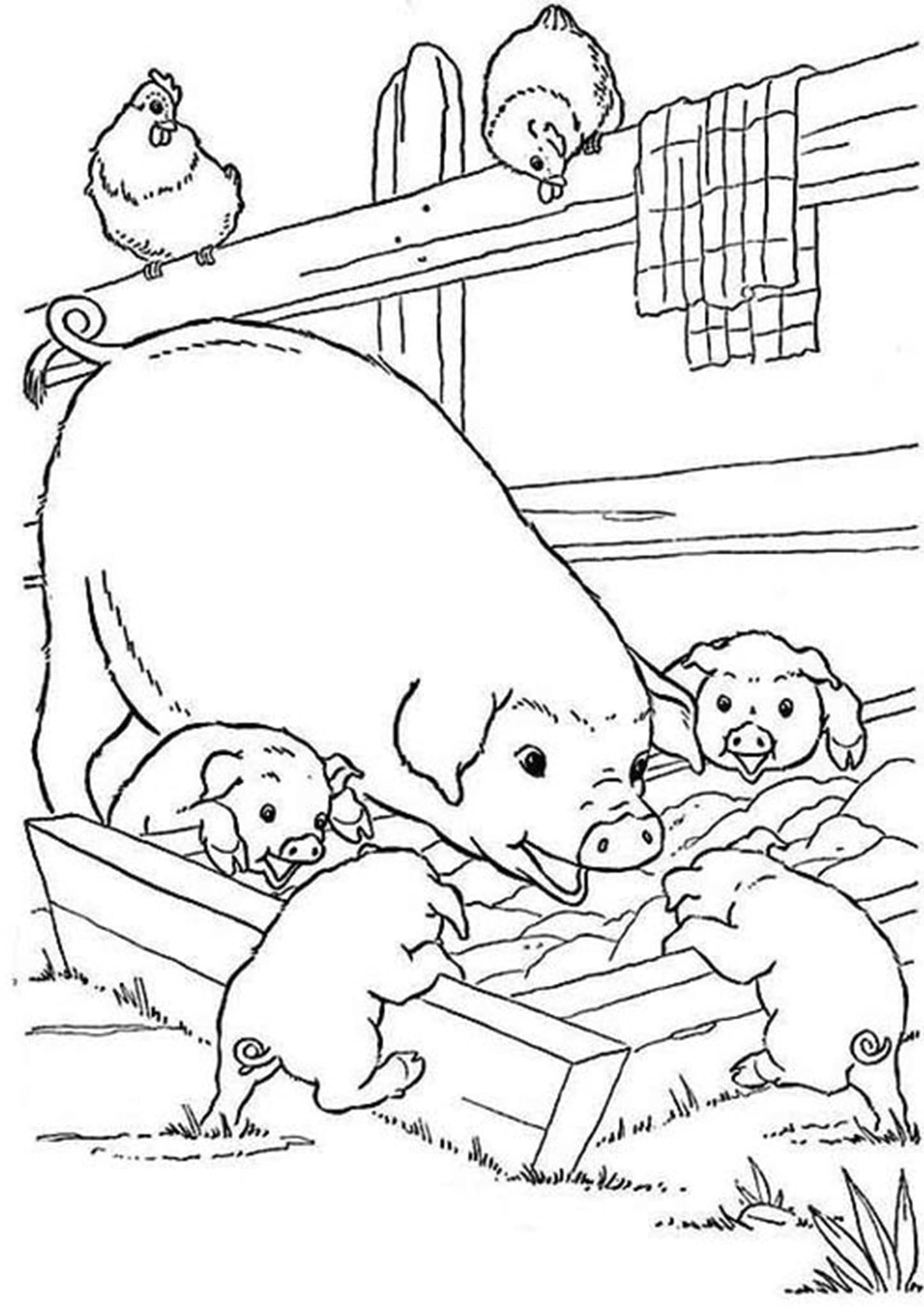 Free Easy To Print Pig Coloring Pages Farm Animal Coloring Pages Farm Coloring Pages Baby Coloring Pages [ 2048 x 1448 Pixel ]