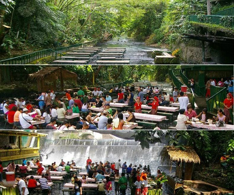 10 Most Unusual Restaurants In The World With Images Waterfall