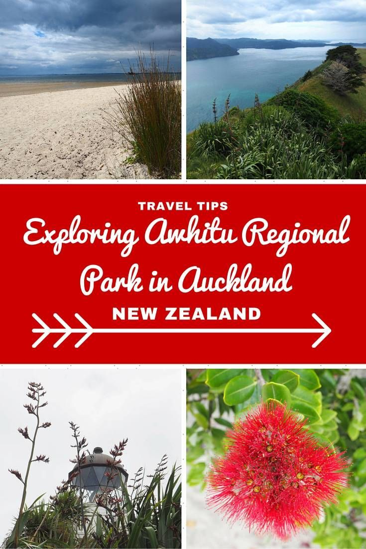 New Zealand Travel Inspiration - Looking for things to do in Auckland City then why not visit Awhitu Regional Park which is a real hidden gem in Auckland. There's a golden sand beach and a lighthouse with views to die for...click on the link to see the view and for more travel tips for Auckland, New Zealand.