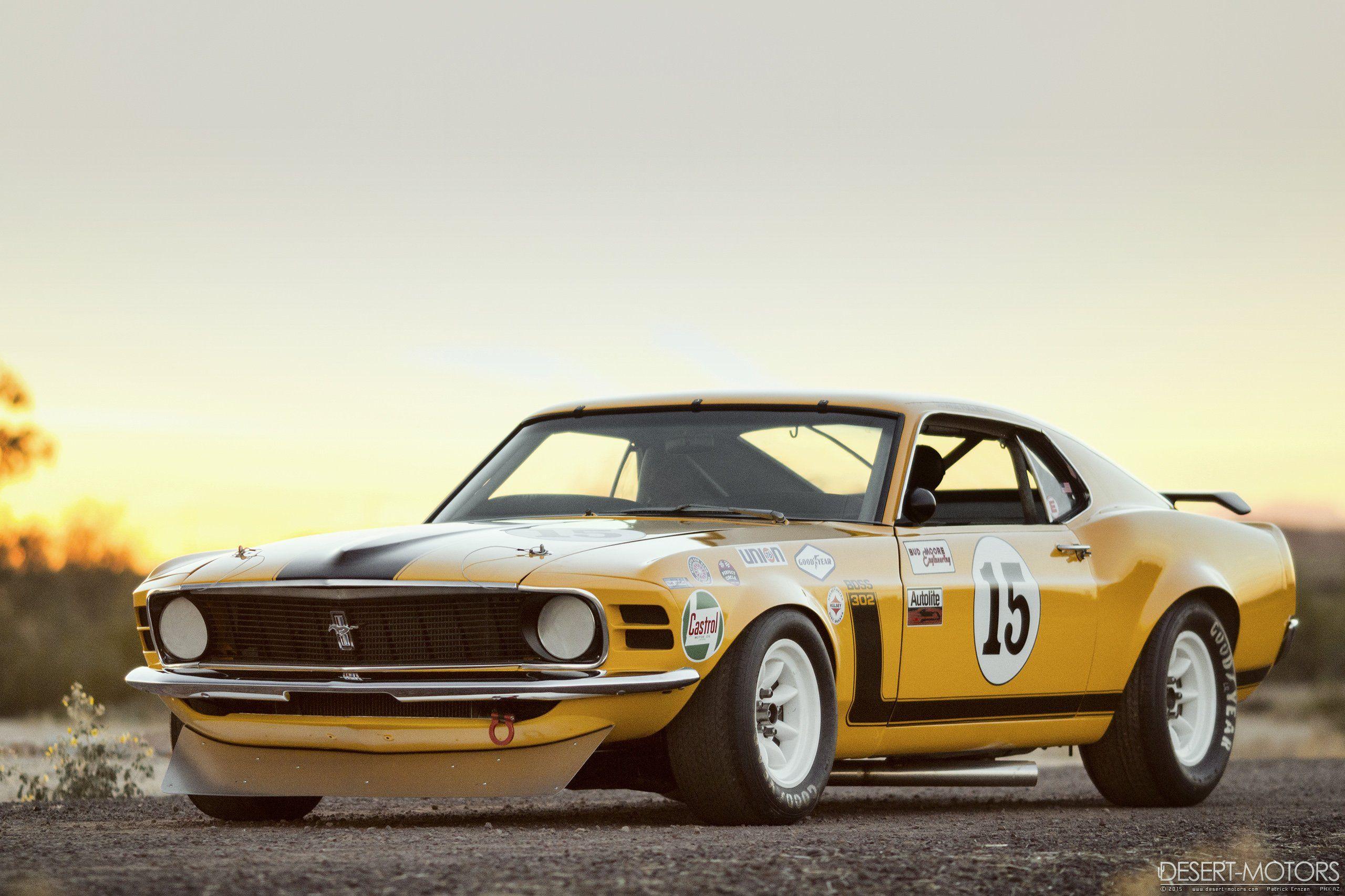 1970 Ford Mustang Boss 302 Kar Kraft Trans-Am Race Car [25601706 ...