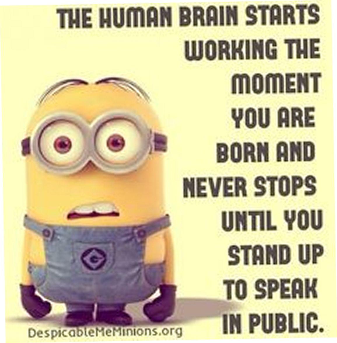 Minion Quotes Today 30  30Th Humor And Minion Humor
